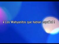 ¡Los Wahyanitos que hablan español!